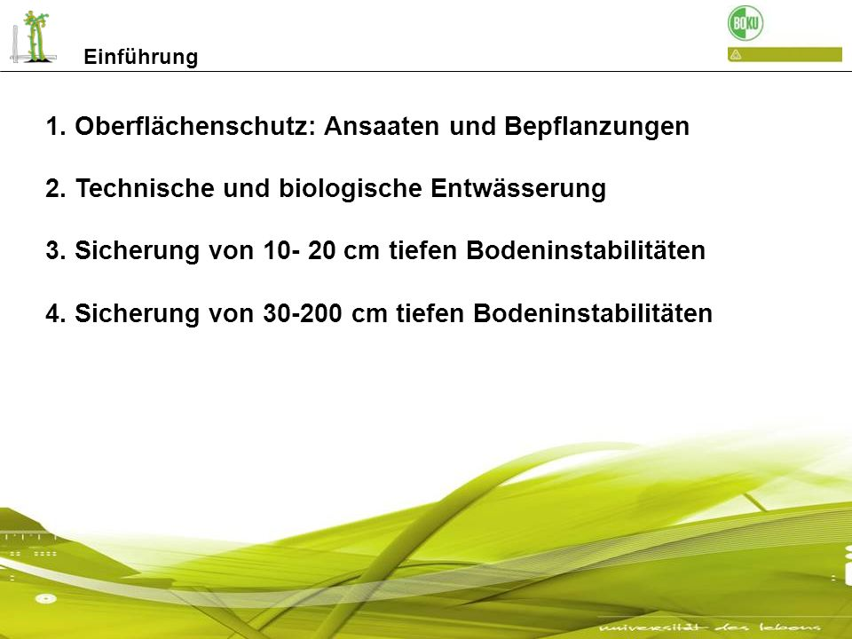 1. Oberflächenschutz: Ansaaten und Bepflanzungen