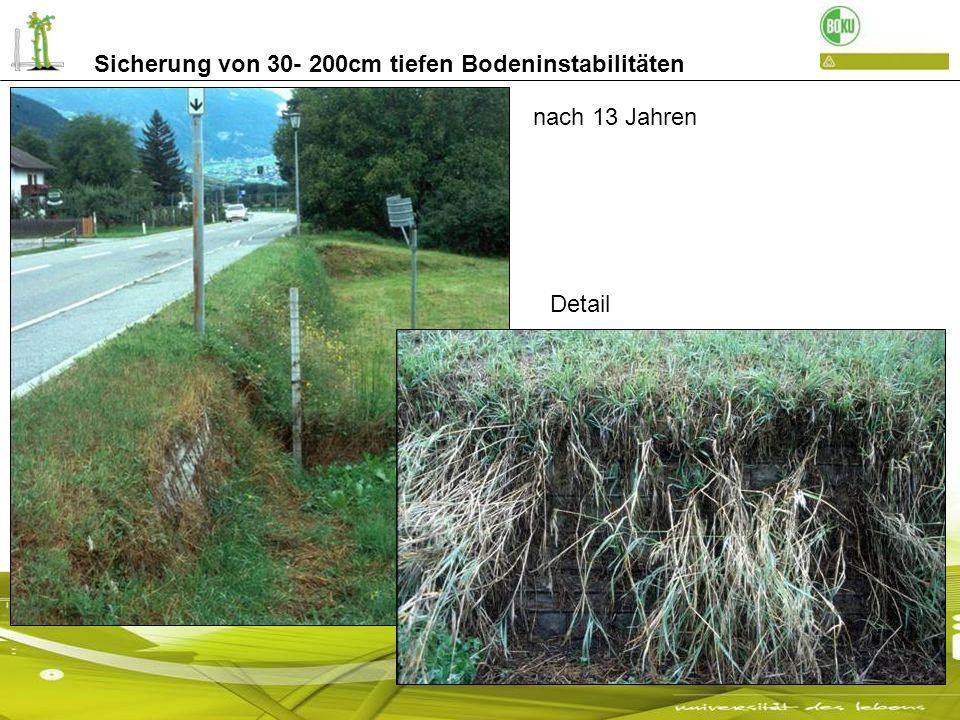 Sicherung von 30- 200cm tiefen Bodeninstabilitäten