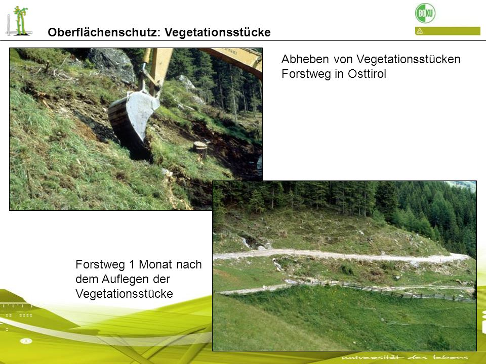 Oberflächenschutz: Vegetationsstücke