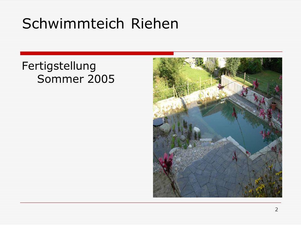 Schwimmteich Riehen Fertigstellung Sommer 2005
