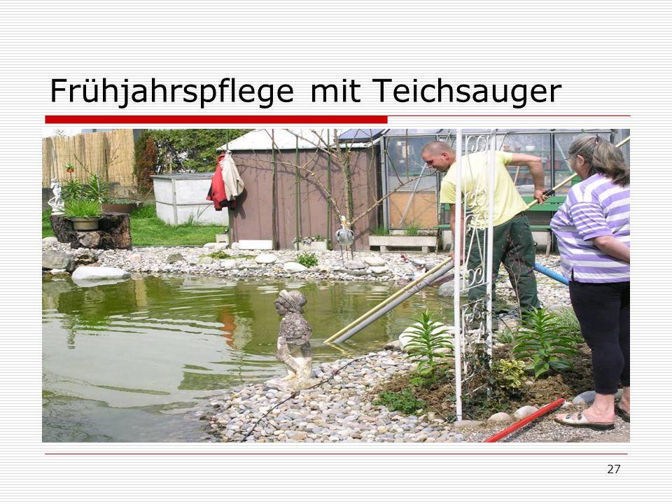 Frühjahrspflege mit Teichsauger