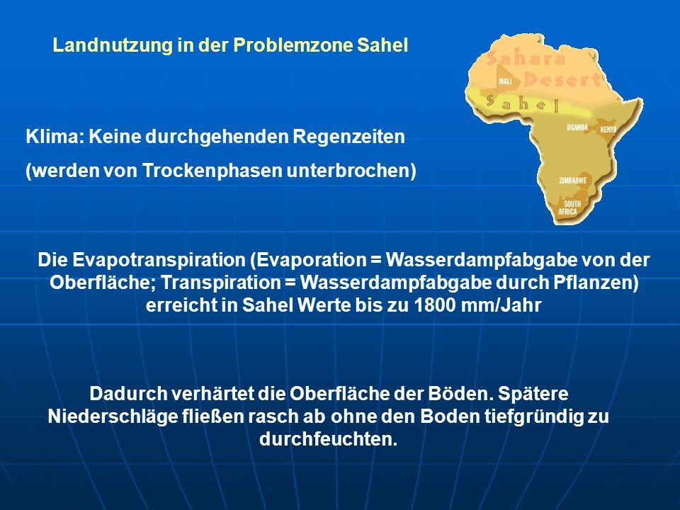 Landnutzung in der Problemzone Sahel