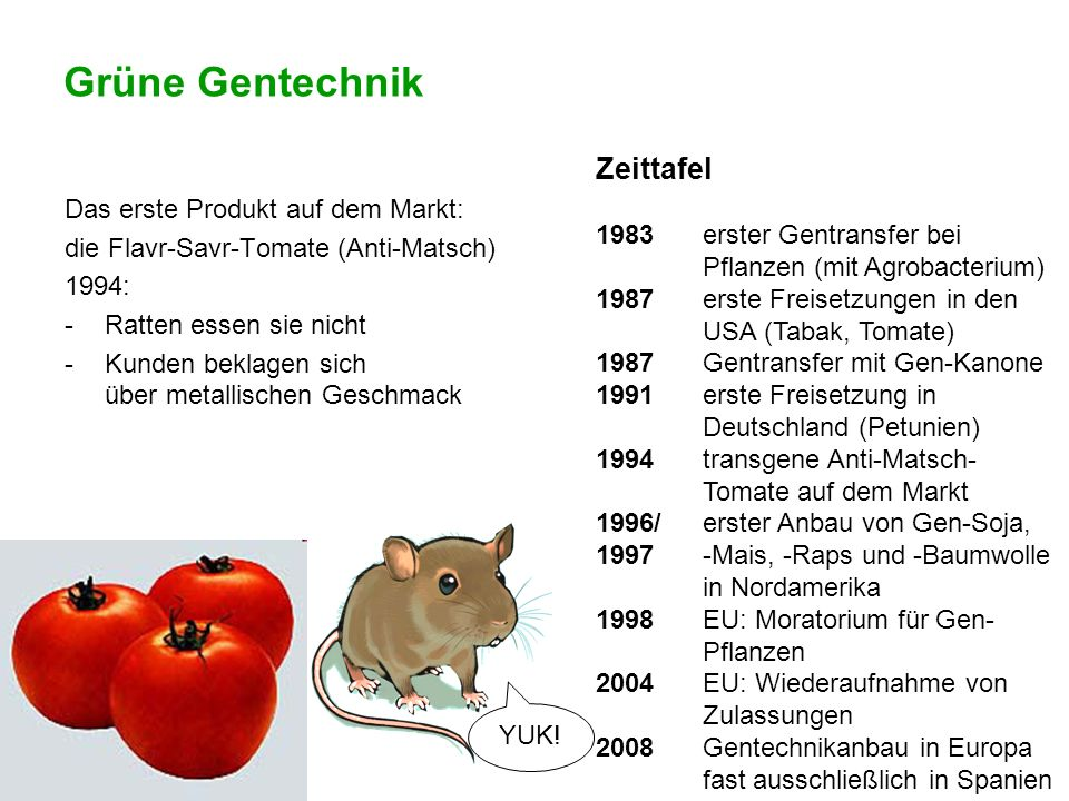 Grüne Gentechnik Zeittafel 1983 erster Gentransfer bei