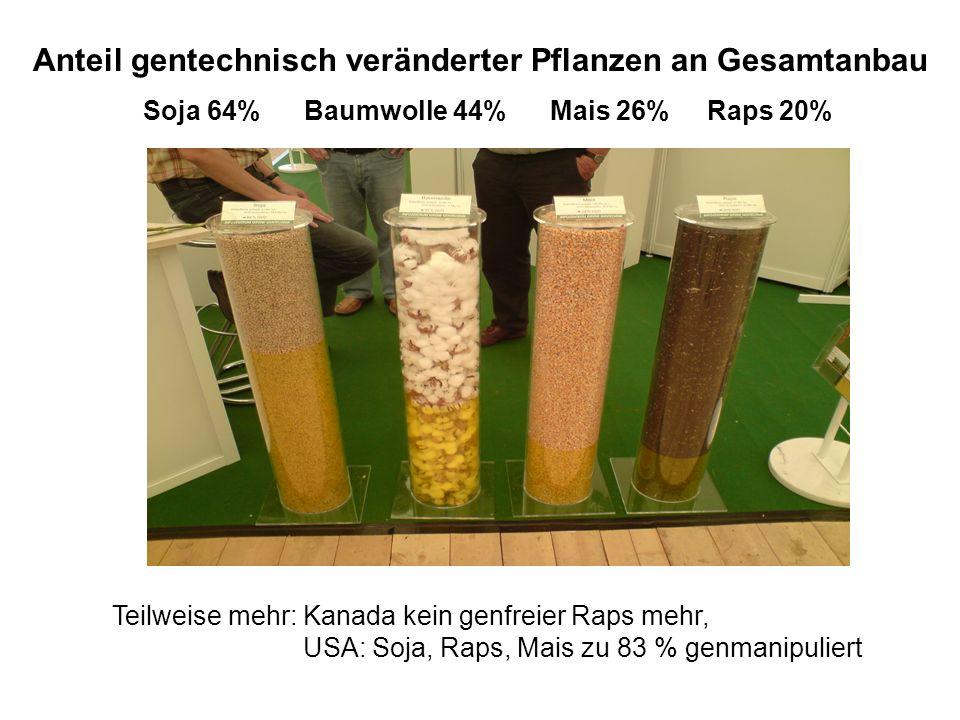 Anteil gentechnisch veränderter Pflanzen an Gesamtanbau