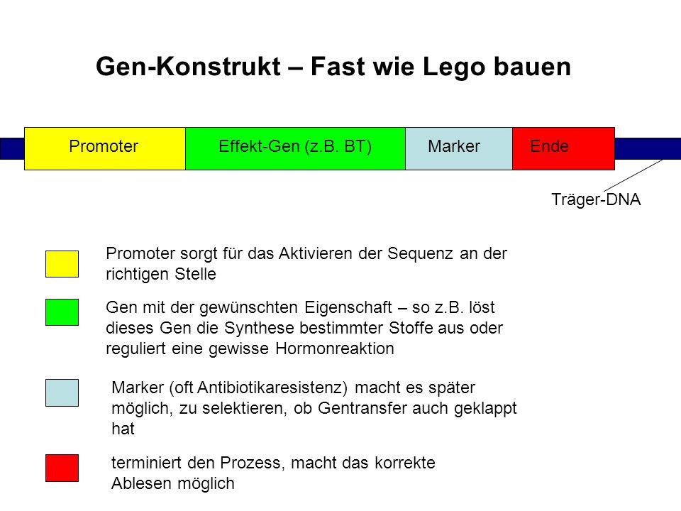 Gen-Konstrukt – Fast wie Lego bauen