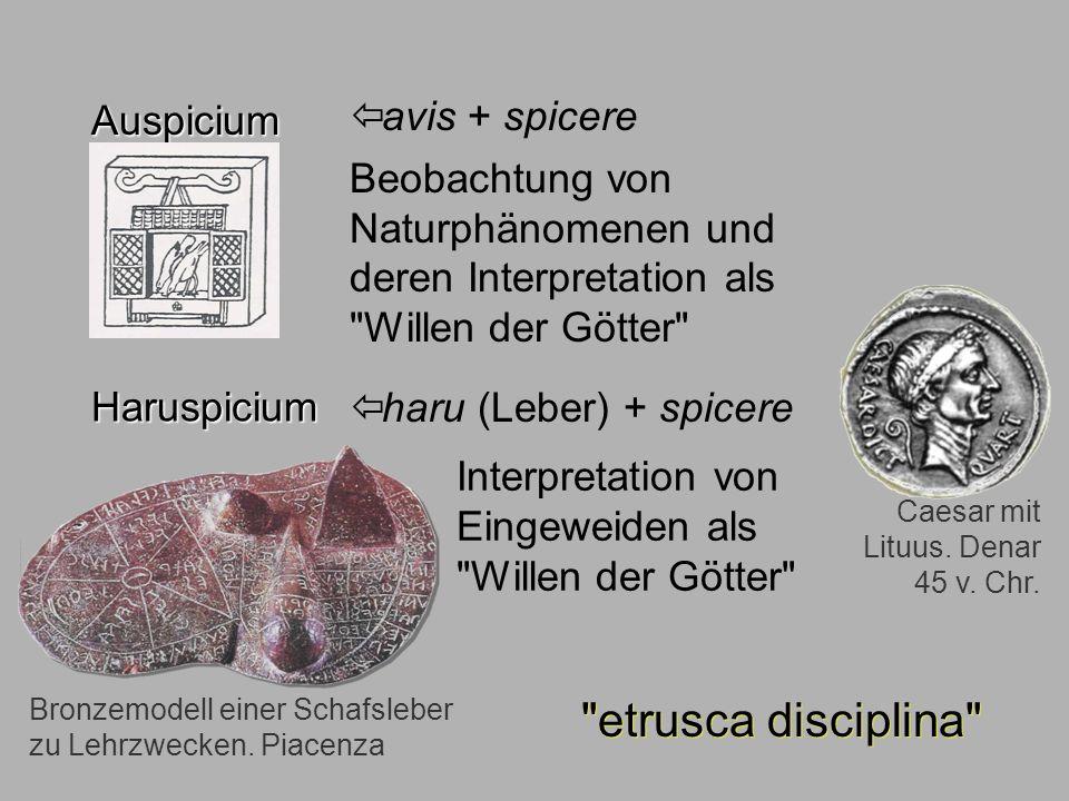 Sagen6 Auspicium etrusca disciplina Auspicium avis + spicere