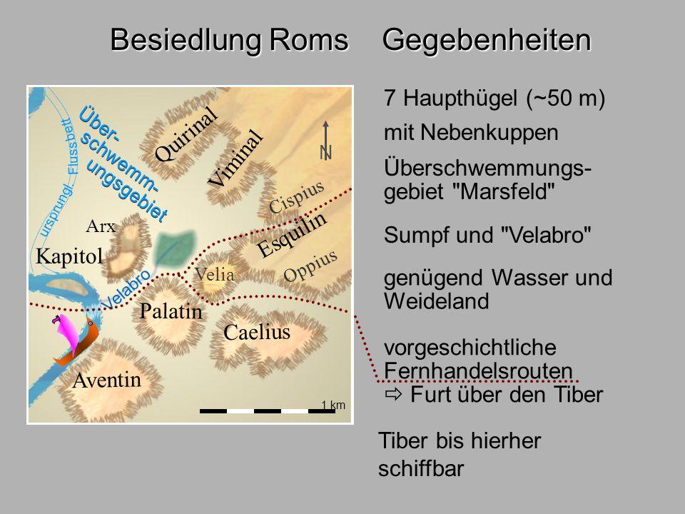 Besiedl.Rom1 Besiedlung Roms Gegebenheiten 7 Haupthügel (~50 m)
