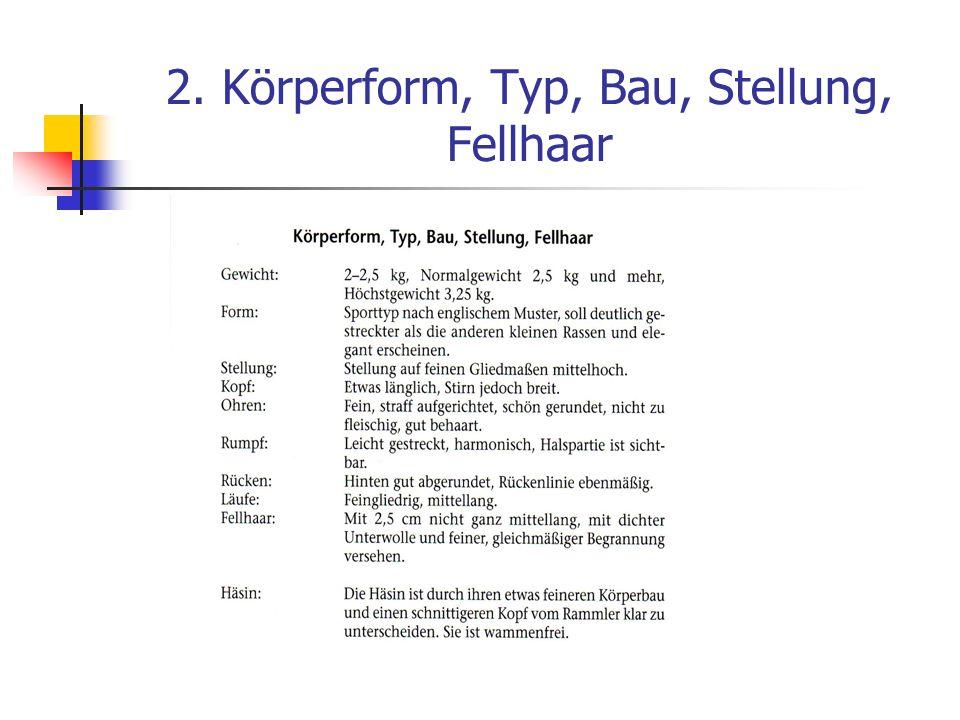 2. Körperform, Typ, Bau, Stellung, Fellhaar