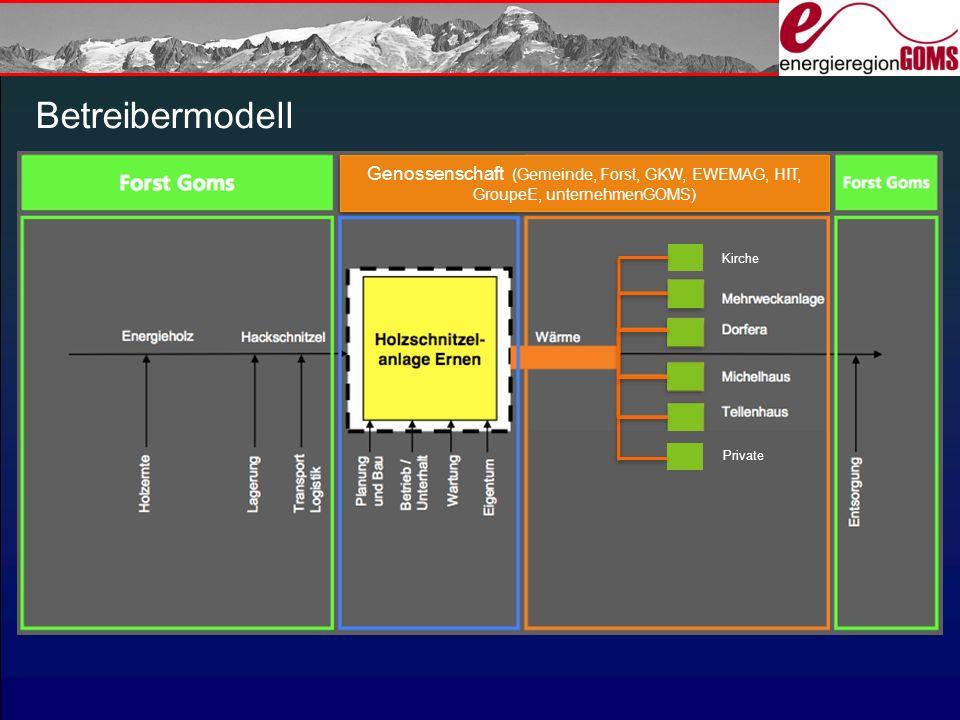 Betreibermodell Genossenschaft (Gemeinde, Forst, GKW, EWEMAG, HIT, GroupeE, unternehmenGOMS) Groupe-E.