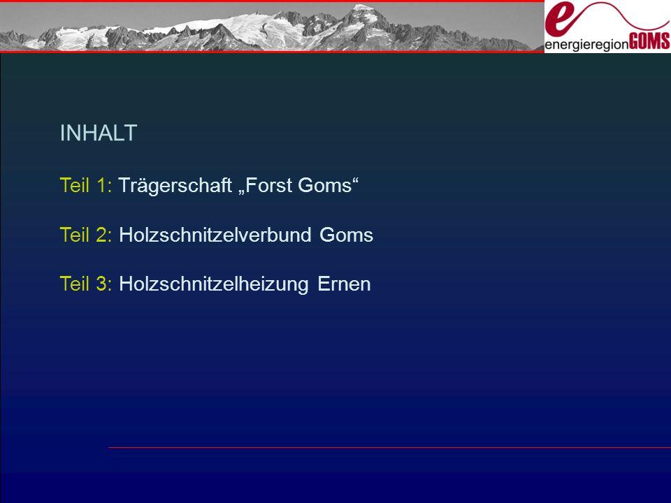 """INHALT Teil 1: Trägerschaft """"Forst Goms"""