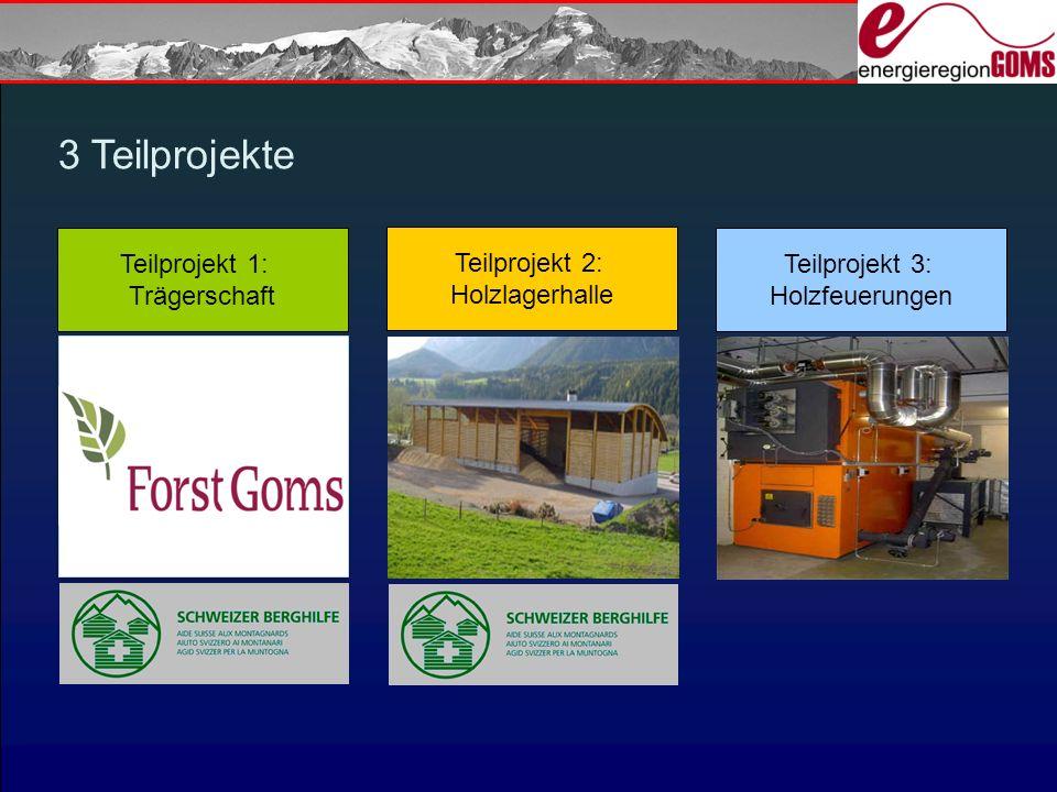 3 Teilprojekte Teilprojekt 1: Trägerschaft Teilprojekt 2: