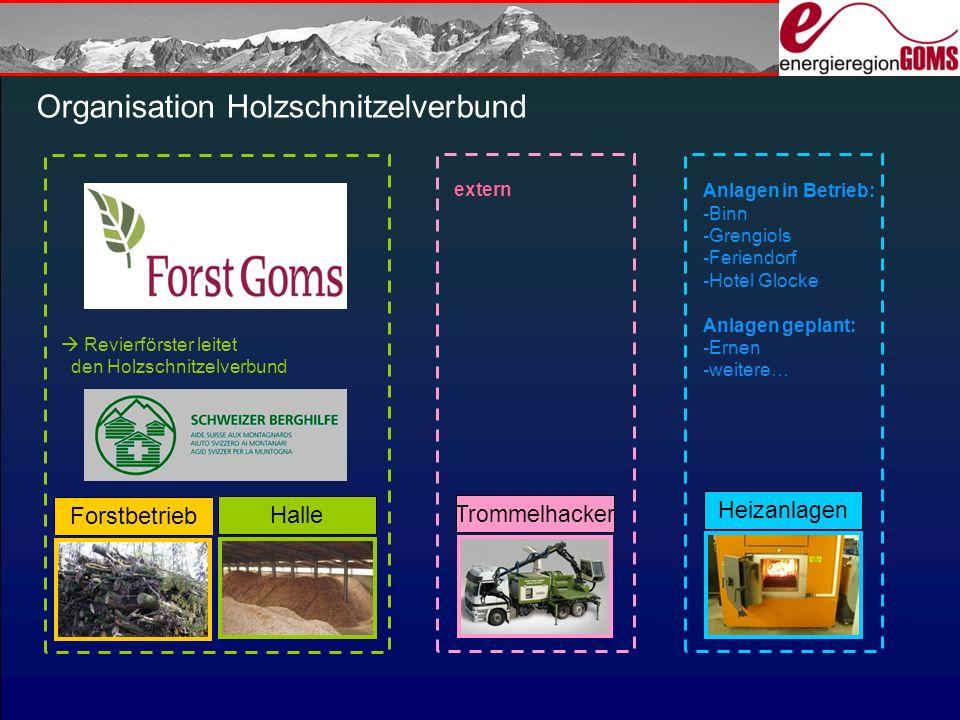 Organisation Holzschnitzelverbund