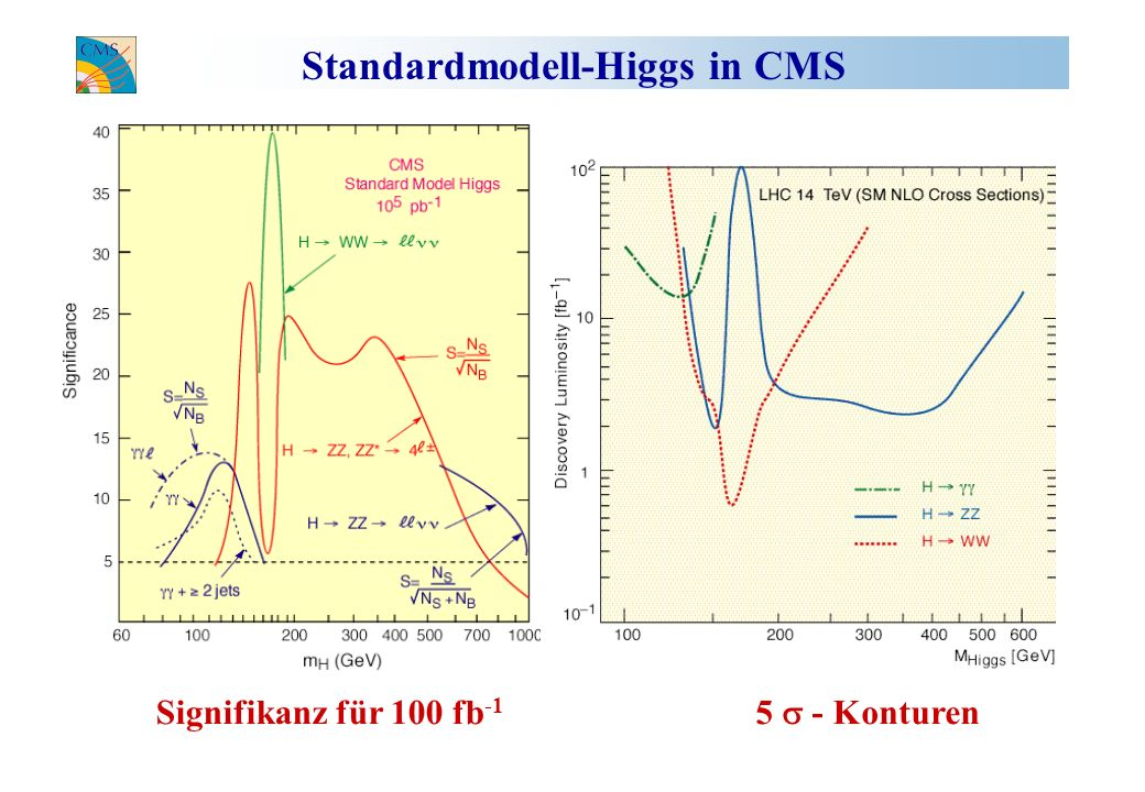 Standardmodell-Higgs in CMS
