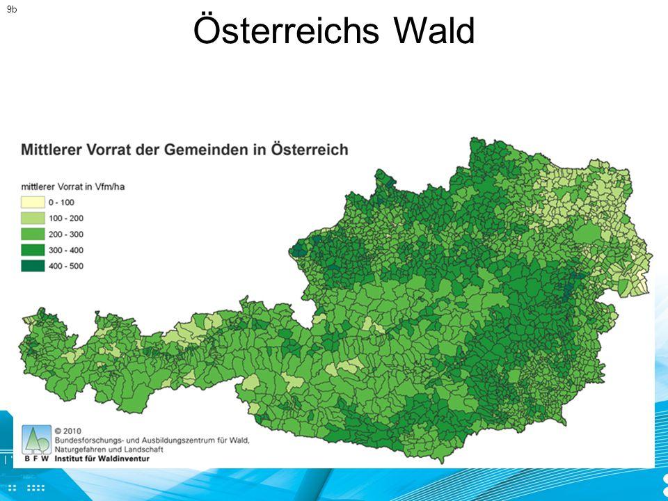 9b Österreichs Wald