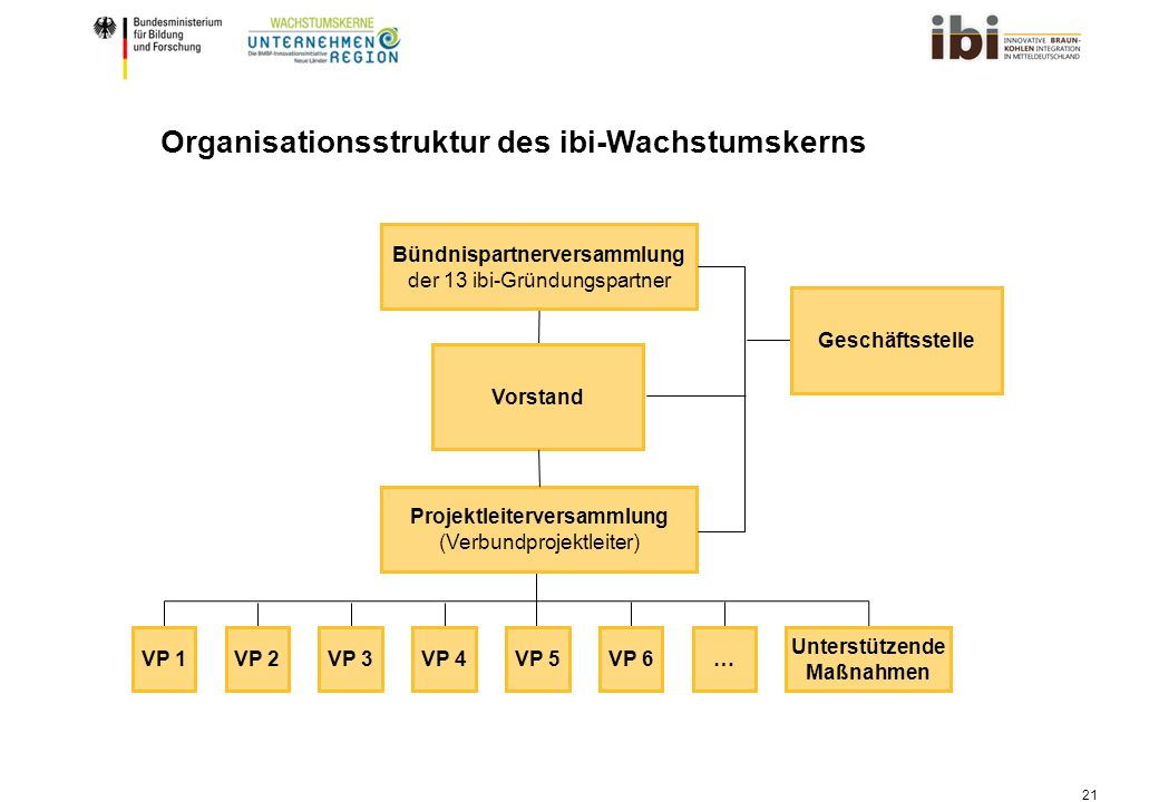 Organisationsstruktur des ibi-Wachstumskerns