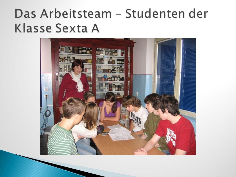 Das Arbeitsteam – Studenten der Klasse Sexta A