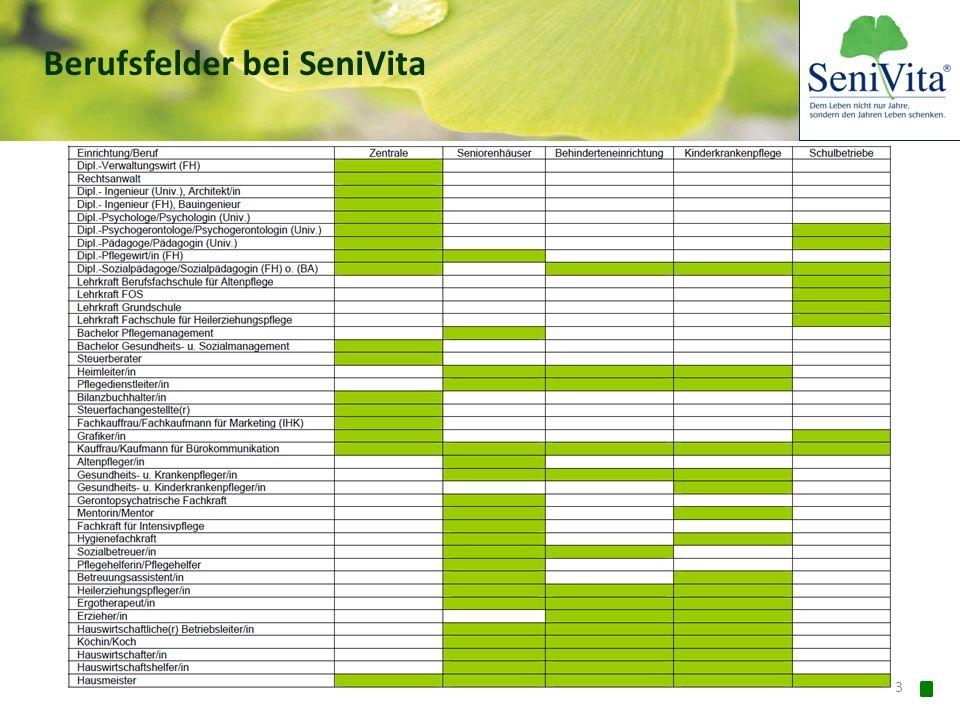 Berufsfelder bei SeniVita
