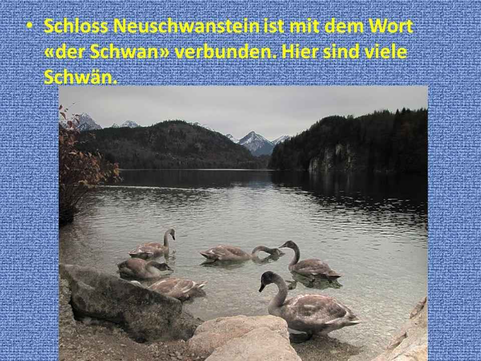 Schloss Neuschwanstein ist mit dem Wort «der Schwan» verbunden