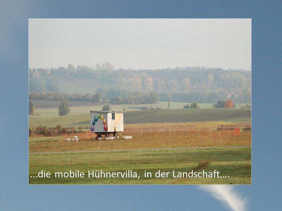 ...die mobile Hühnervilla, in der Landschaft….