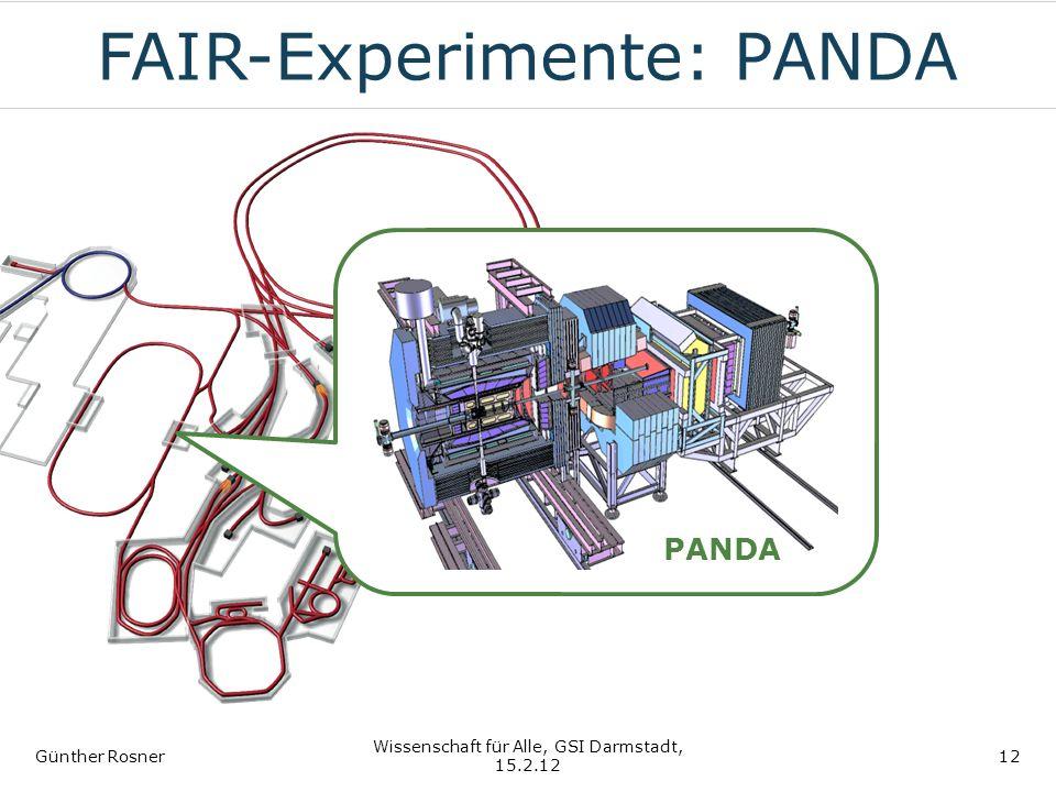 FAIR-Experimente: PANDA