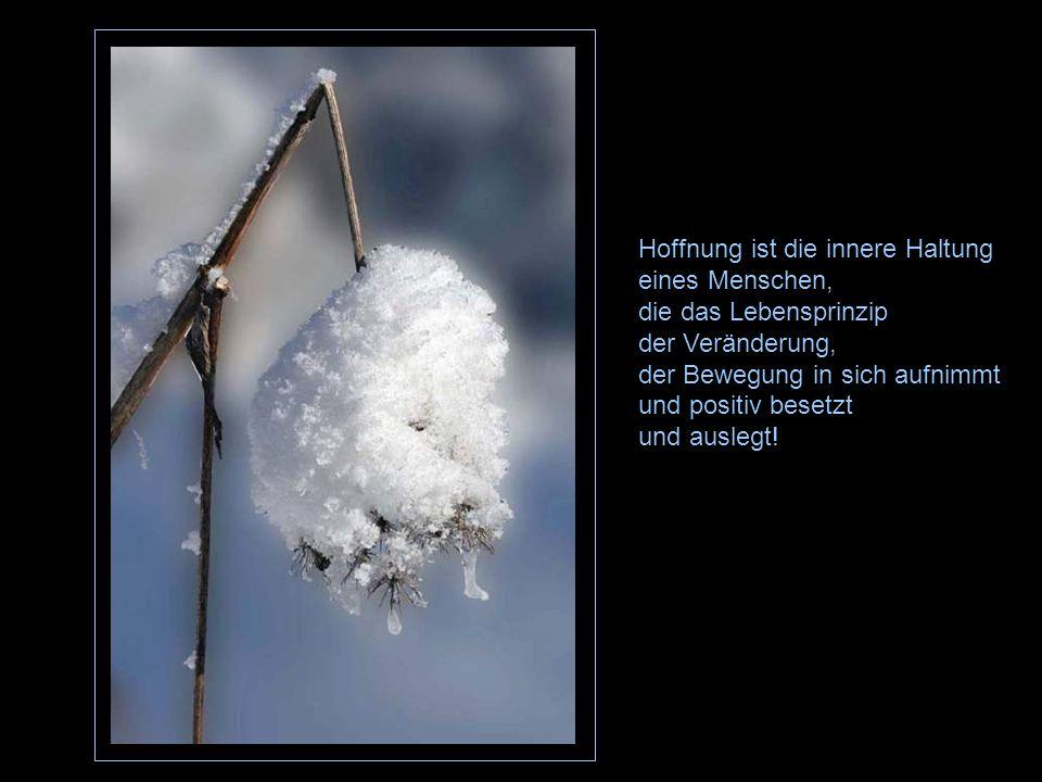 Hoffnung ist die innere Haltung eines Menschen,