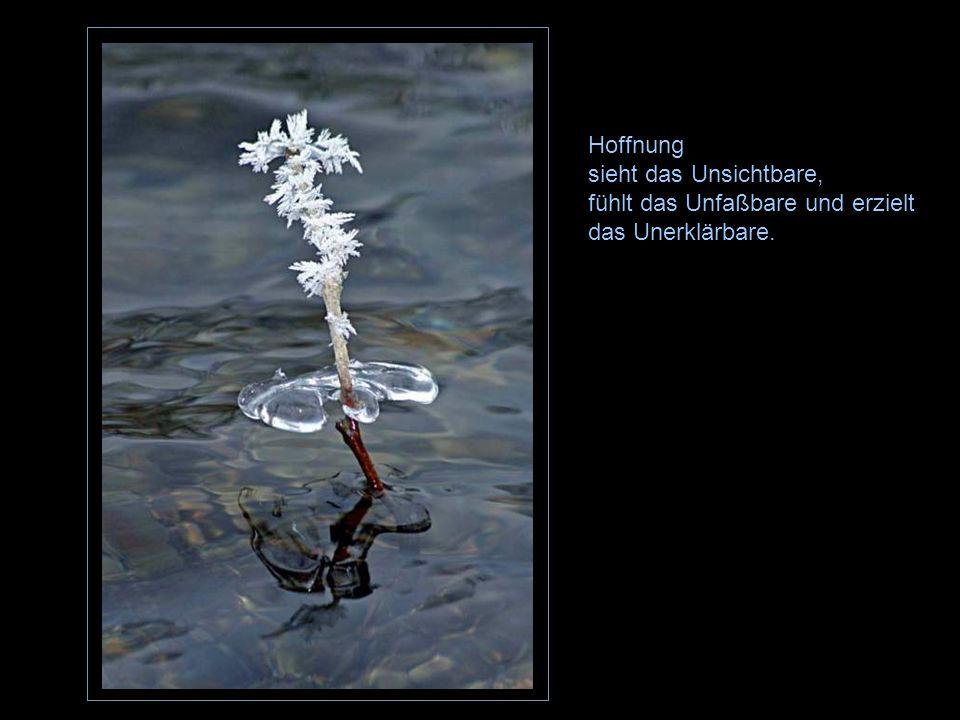 Hoffnung sieht das Unsichtbare,