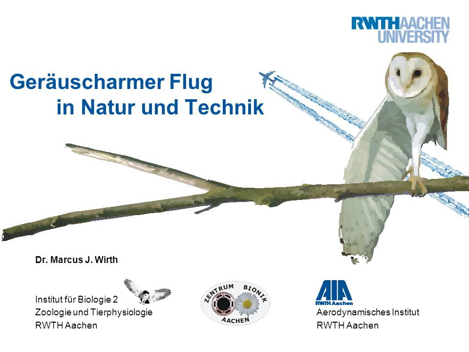 Geräuscharmer Flug in Natur und Technik