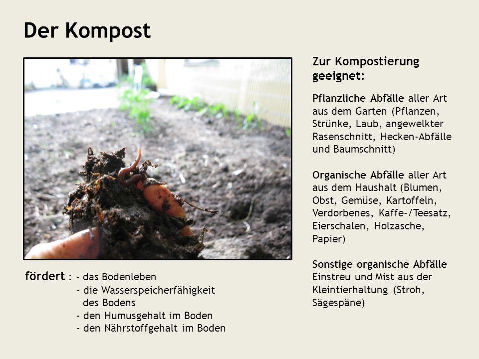 Der Kompost Zur Kompostierung geeignet: