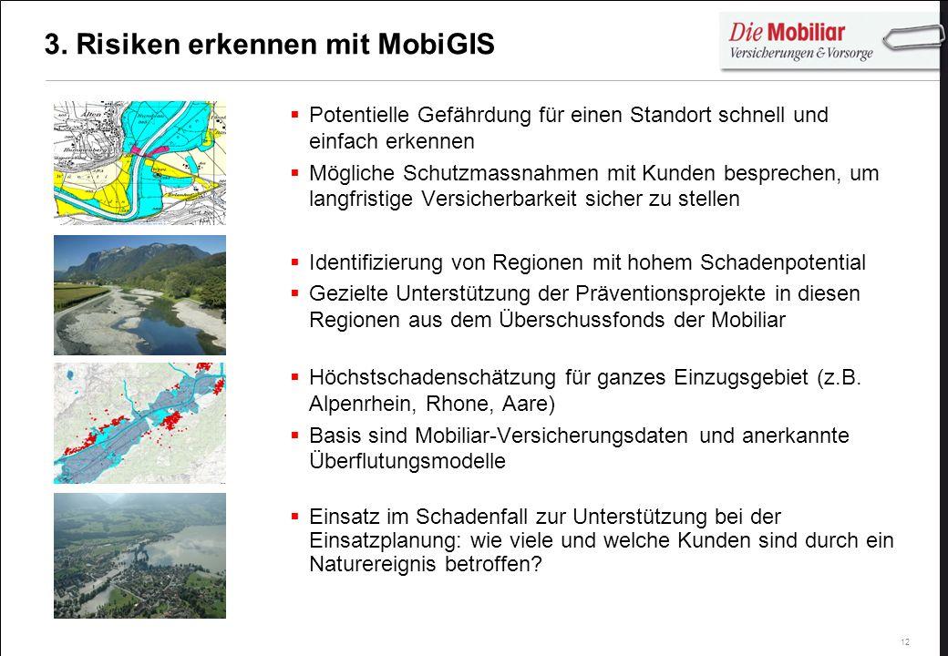 3. Risiken erkennen mit MobiGIS