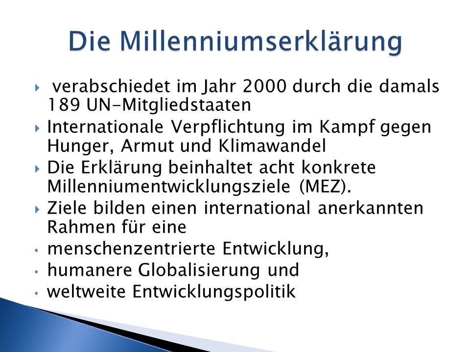 Die Millenniumserklärung
