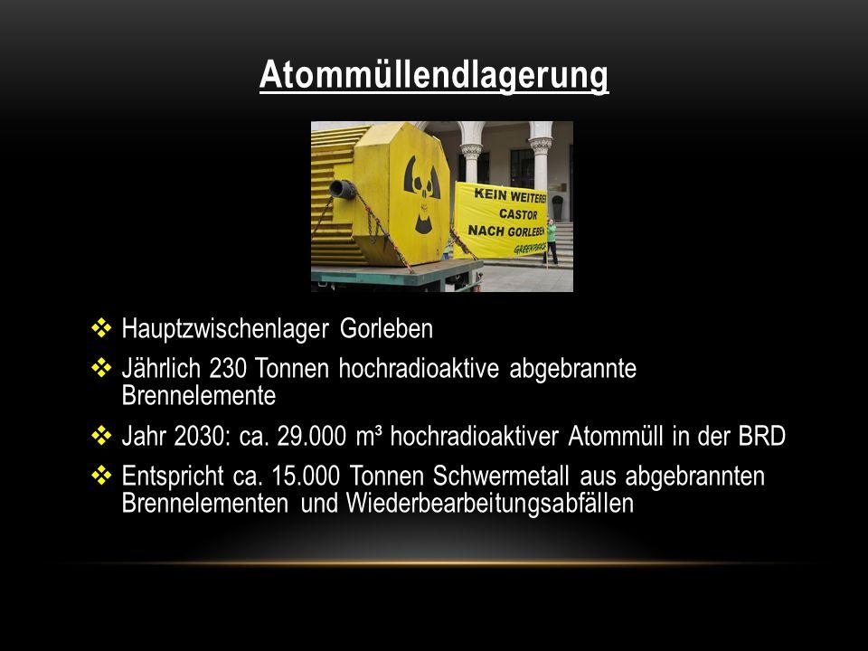 Atommüllendlagerung Hauptzwischenlager Gorleben