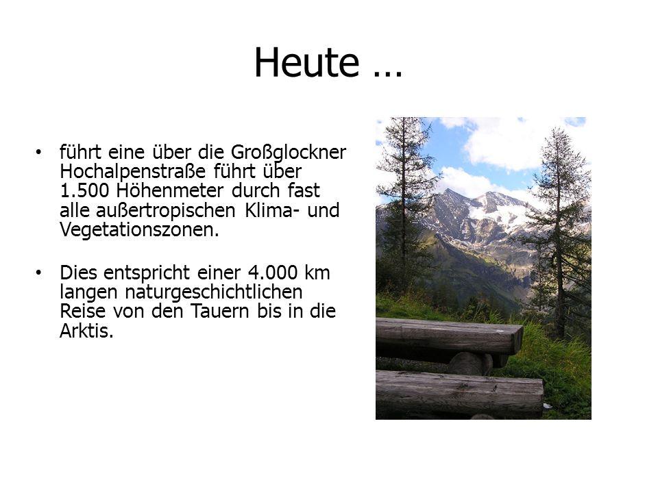 Heute …führt eine über die Großglockner Hochalpenstraße führt über 1.500 Höhenmeter durch fast alle außertropischen Klima- und Vegetationszonen.