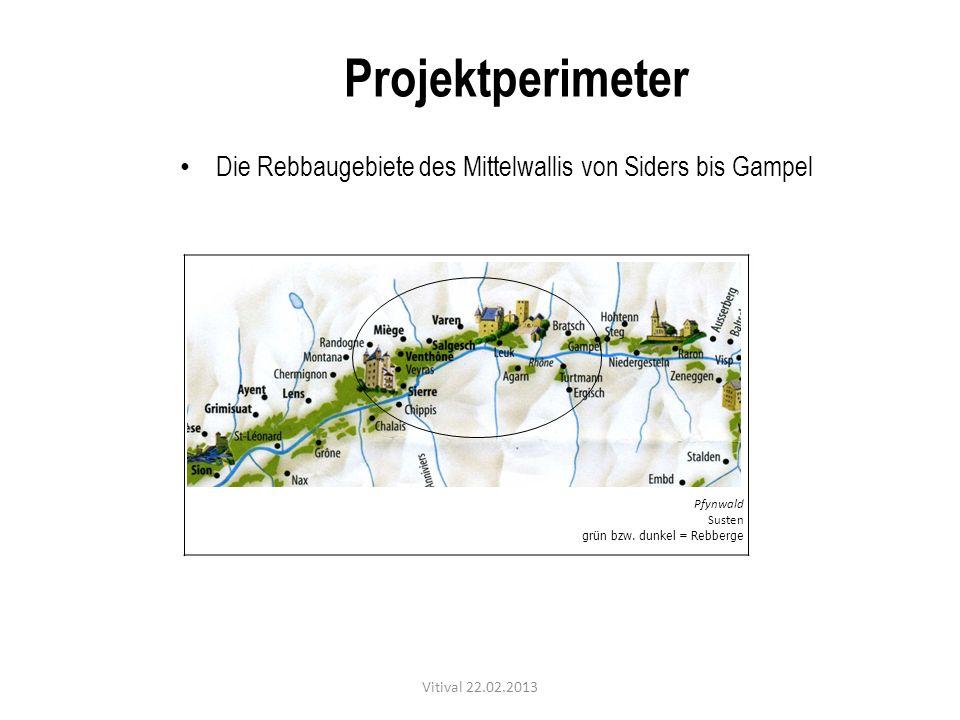 Projektperimeter Die Rebbaugebiete des Mittelwallis von Siders bis Gampel. Pfynwald. Susten. grün bzw. dunkel = Rebberge.