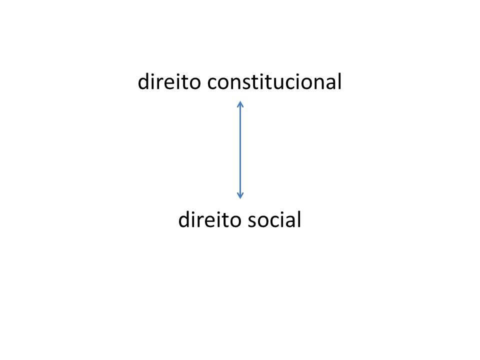 direito constitucional direito social