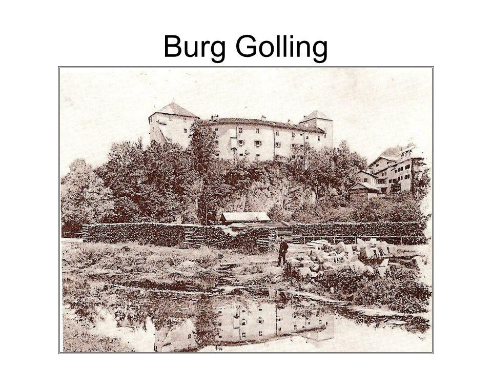 Burg Golling Heimatmuseum: Kultur- und naturgeschichtliche Ausstellungen. Sonderausstellungen.