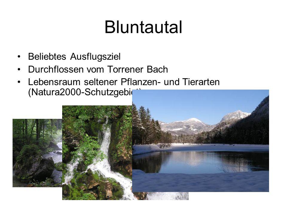Bluntautal Beliebtes Ausflugsziel Durchflossen vom Torrener Bach