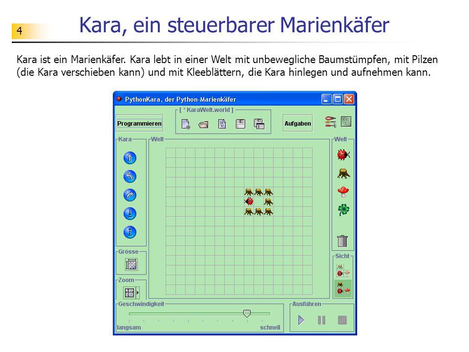 Kara, ein steuerbarer Marienkäfer