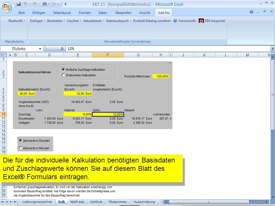 Die für die individuelle Kalkulation benötigten Basisdaten und Zuschlagswerte können Sie auf diesem Blatt des Excel® Formulars eintragen.