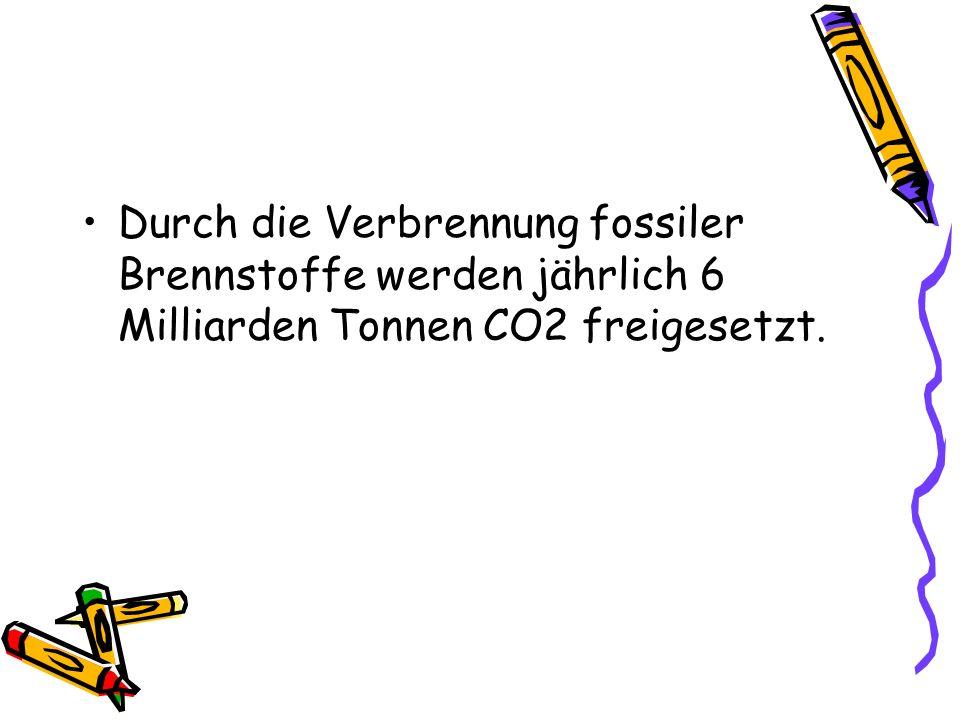 Durch die Verbrennung fossiler Brennstoffe werden jährlich 6 Milliarden Tonnen CO2 freigesetzt.