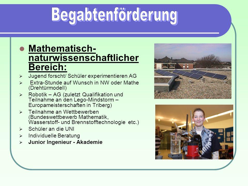 Begabtenförderung Mathematisch-naturwissenschaftlicher Bereich: