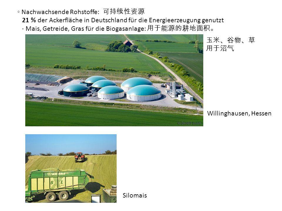 ◦ Nachwachsende Rohstoffe: 可持续性资源