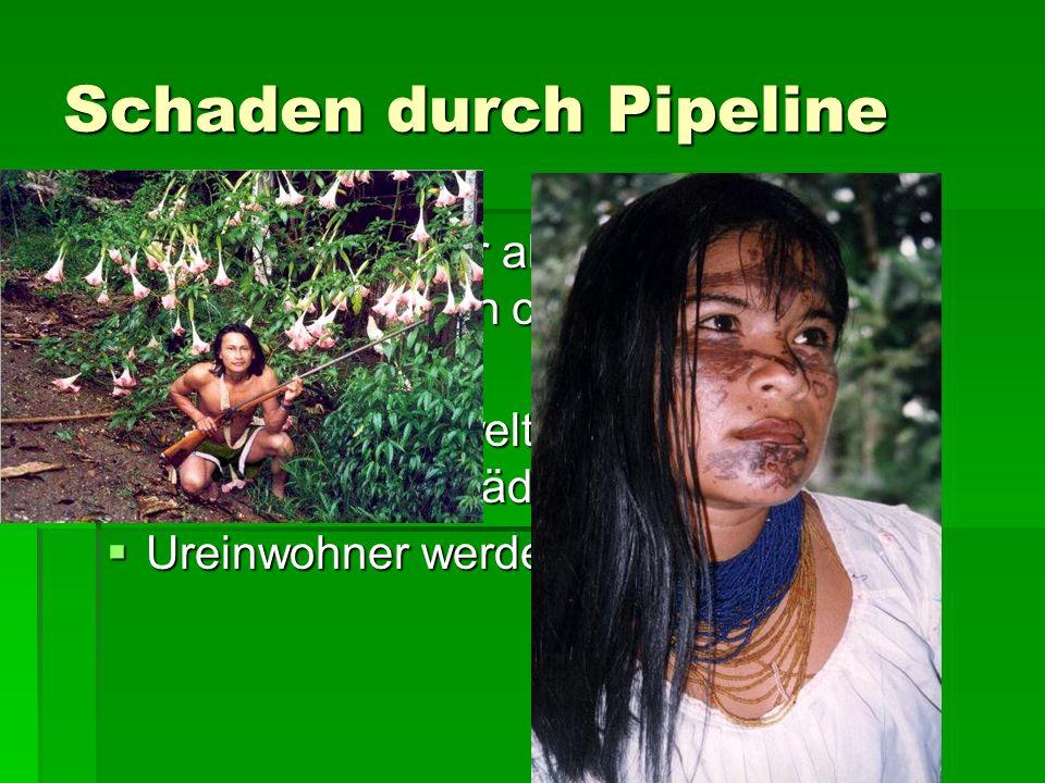 Schaden durch Pipeline