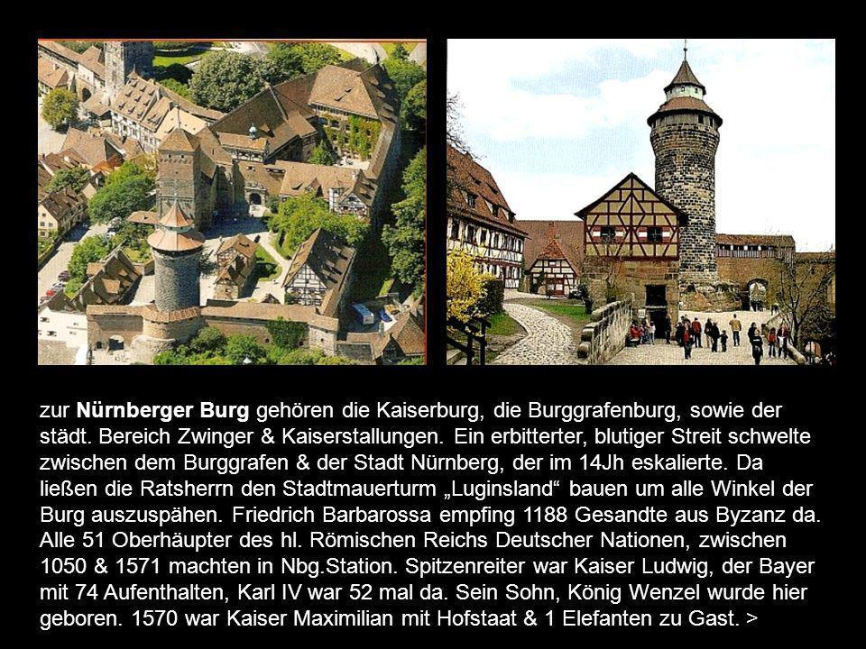 zur Nürnberger Burg gehören die Kaiserburg, die Burggrafenburg, sowie der städt.