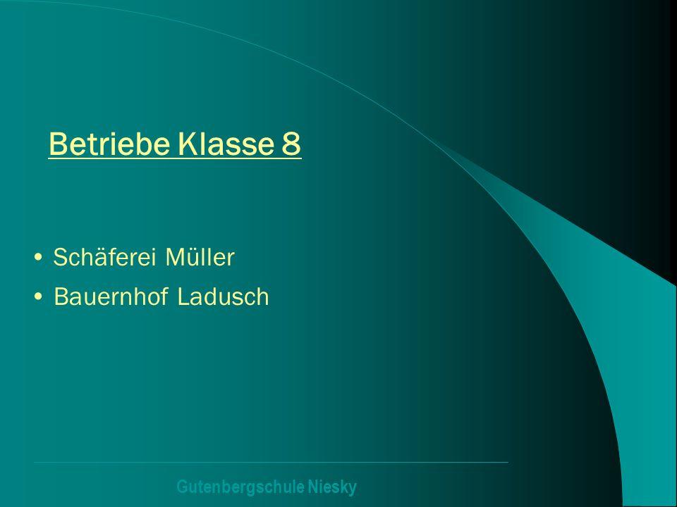 Betriebe Klasse 8 Schäferei Müller Bauernhof Ladusch