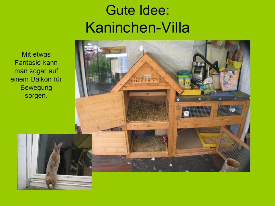 Gute Idee: Kaninchen-Villa