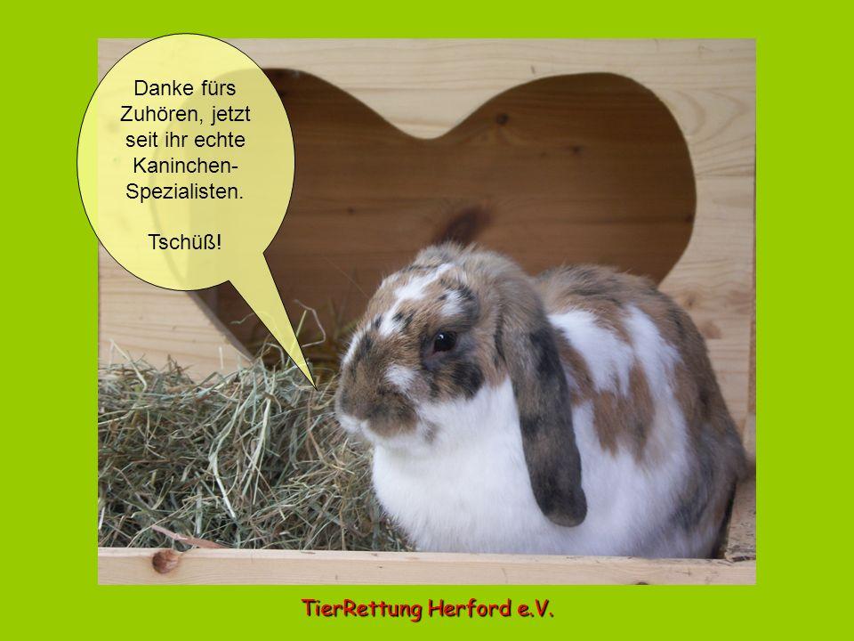 Danke fürs Zuhören, jetzt seit ihr echte Kaninchen-Spezialisten.