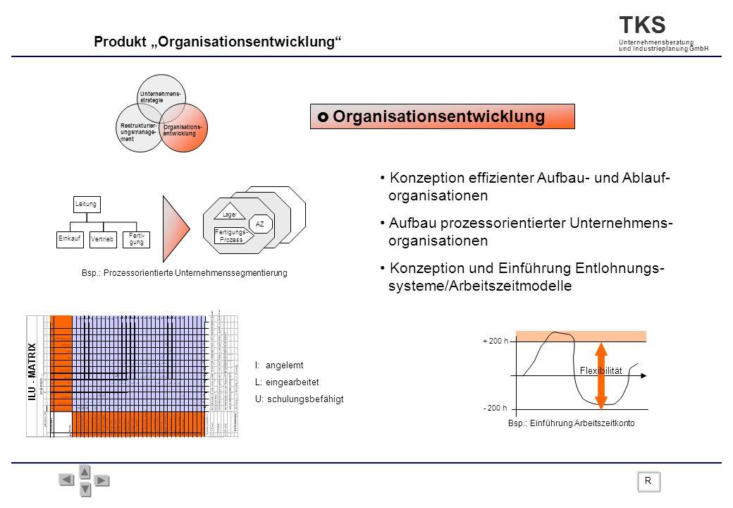 Konzeption effizienter Aufbau- und Ablauf- organisationen