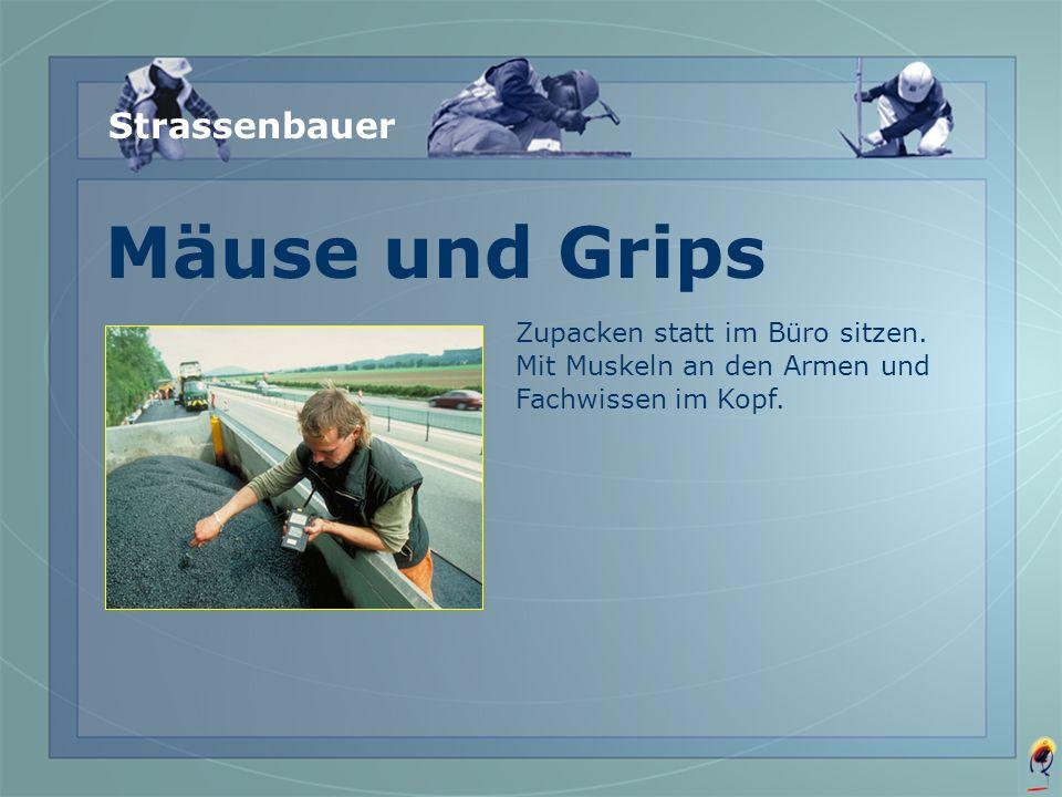 Mäuse und Grips Strassenbauer