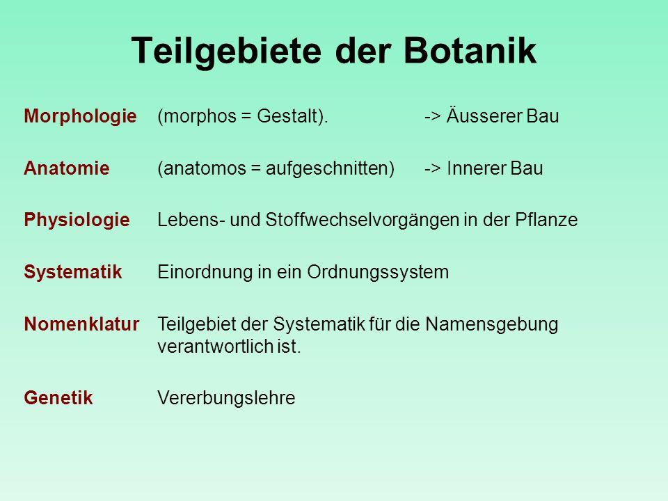 Teilgebiete der Botanik