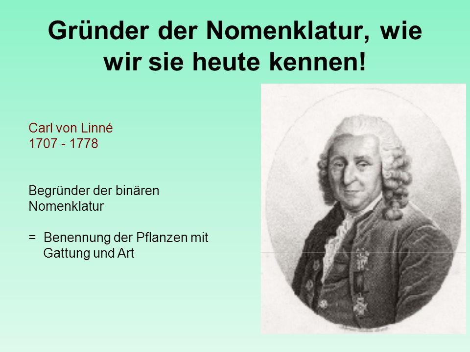 Gründer der Nomenklatur, wie wir sie heute kennen!